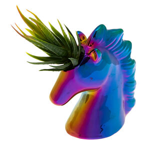 Rainbow Anodized Unicorn Succulent Plant,