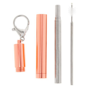 Collapsible Metal Straw Tube Keychain - Rose Gold,