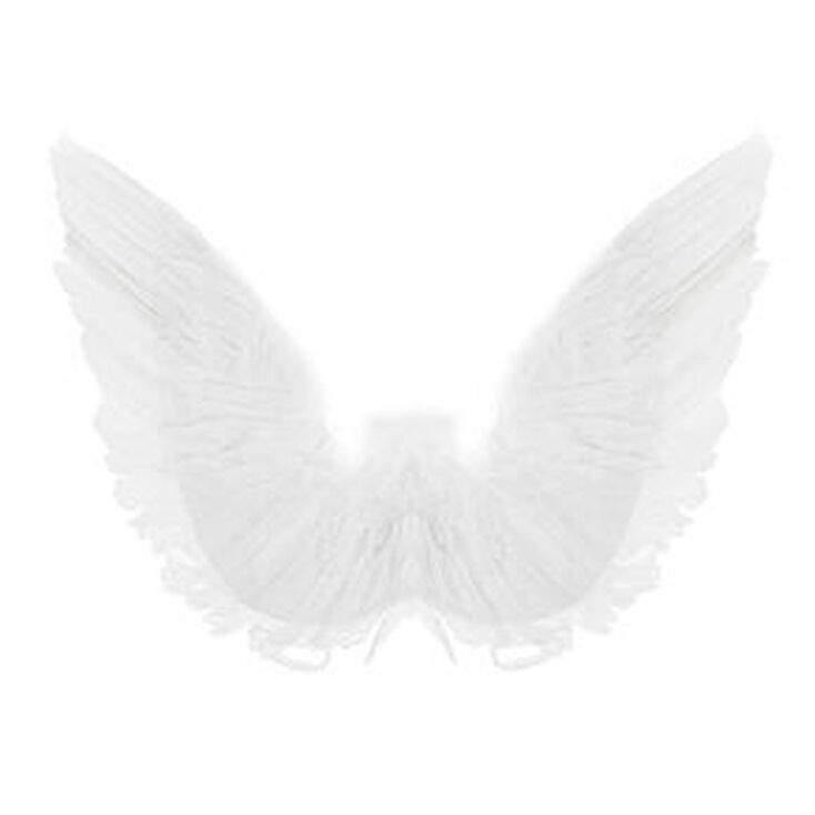 Feather Wings - White,